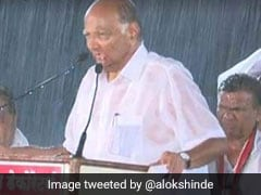 "Soaked In Rain, Sharad Pawar Admits ""Mistake"" At Rally In Party Bastion"