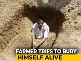 Video : Dejected Telangana Farmer Digs His Own Grave, Tries To Bury Himself Alive