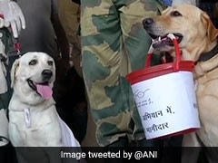 BSF Dog Squad Takes Part In <i>Swachhata Abhiyan</i> In Jammu