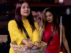 <i>Bigg Boss 13</i> Preview, October 11: Shehnaz Gill Will Target Paras Chhabra In 'BB Fisheries' Task