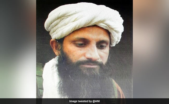 Al-Qaeda's South Asia Chief, Born In India, Killed In Afghanistan: Report