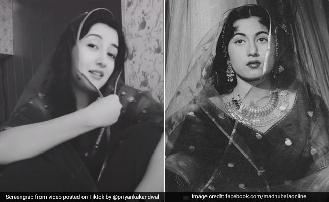 'TikTok'-এর Madhubala'-র সাথে, হাওড়া ব্রিজের বিখ্যাত গানের Video