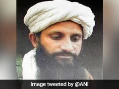 Al-Qaeda's South Asia Chief, Born In India, Killed In Afghanistan: Report
