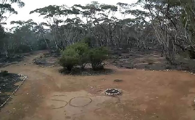 Australian Woman, Missing For 3 Days, Found After CCTV Shows 'SOS' Scrawled On Earth