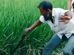 வயக்காட்டுல இருந்து snake-ஐ அசால்டாக எடுத்த 'வீரன்'… கடைசில இருக்கு பாருங்க ஒரு ட்விஸ்ட்ட்ட்டு!