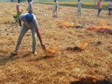 Video : Fields on fire in Punjab