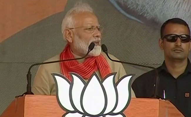 Haryana Assembly Elections: Xi Jinping Has Seen 'Dangal', Says PM While Campaigning For Babita Phogat