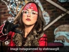 'पंजाबी कैटरीना कैफ' को बॉयफ्रेंड ने कहा No तो यूं दिया करारा जवाब- बार-बार देखेंगे धांसू Video