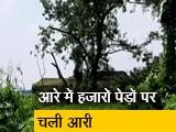 Video : सिटी एक्सप्रेस: आरे में काटे गए हजार से ज्यादा पेड़, पटना के कई इलाकों में अभी भी जमा है पानी