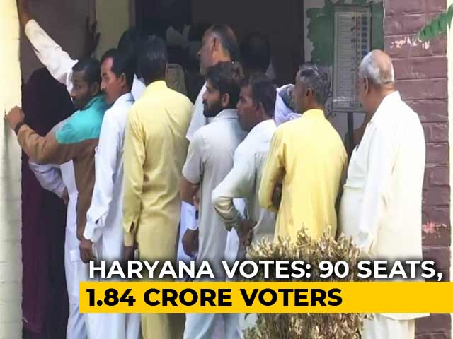 Advantage BJP As Voting Begins In Haryana