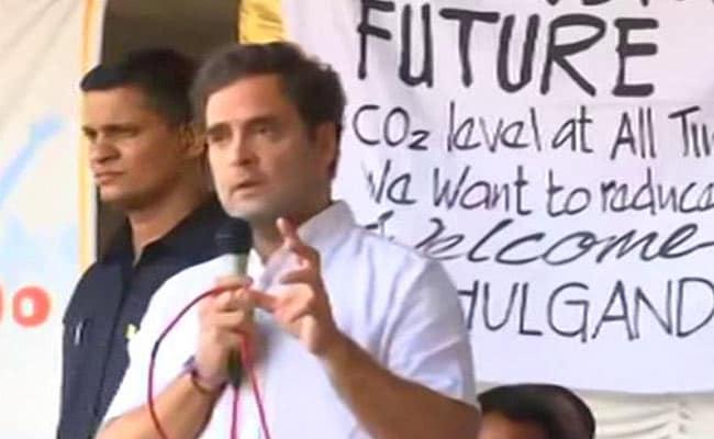 Rahul Gandhi Joins Wayanad Protest Over Night Traffic Ban, Assures Legal Help