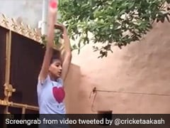 Aakash Chopra Posts Video Of A Girl Emulating Harbhajan Singh
