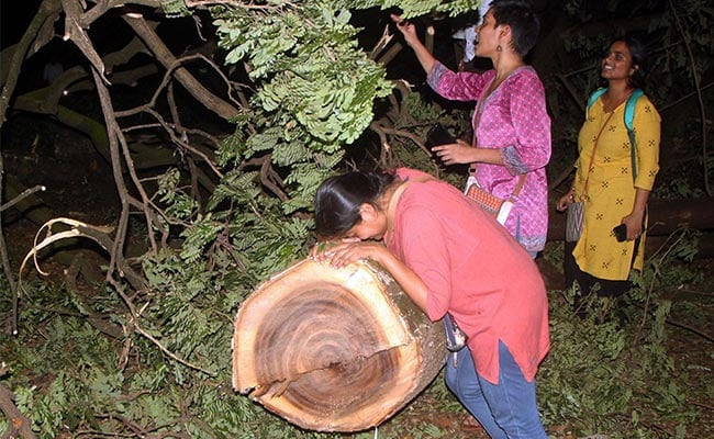 Top Court To Hear Case For Mumbai's Aarey Trees Today, Activists Get Bail