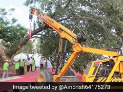 Bulldozers Enter Mumbai's Aarey To Cut Trees, 29 Activists Arrested