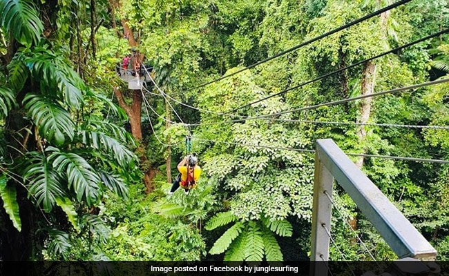 Man Dies As Couple Falls From 5-Storey-High Jungle Zipline, Woman Injured