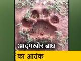 Video : बंदीपुर टाइगर रिजर्व के आसपास इलाके में बाघ का आतंक