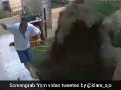 कॉकरोच को मारने के लिए घर के गार्डन में किया धमाका लेकिन अब पछता रहा है ये शख्स, देखें VIDEO