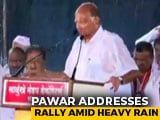 Video : Drenched In Rain, Sharad Pawar Addresses Poll Rally In Satara