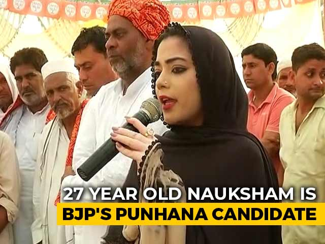 Video : London-Educated 27-Year-Old Is BJP's Bet In Muslim-Majority Haryana Seat