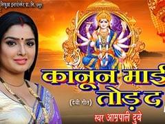 आम्रपाली दुबे ने नवरात्रि पर गाया 'कानून माई तोड़ द' देवी गीत, सुनकर भक्ति में हो जाएंगे लीन- देखें Video