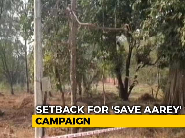 Video : 'Aarey Not A Forest': Bombay High Court Won't Stop Tree-Cutting For Metro