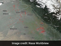 As Air Quality Worsens, Delhi Shares NASA Images Of Crop Burning Nearby
