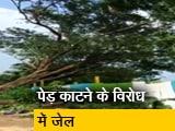 Video : आरे में पेड़ काटे जाने के विरोध में जेल भेजे गए TISS के दो छात्र