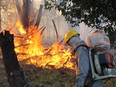 """Fire Warriors"" In Amazon Stand In The Way Of Arsonists To Stop Blazes"