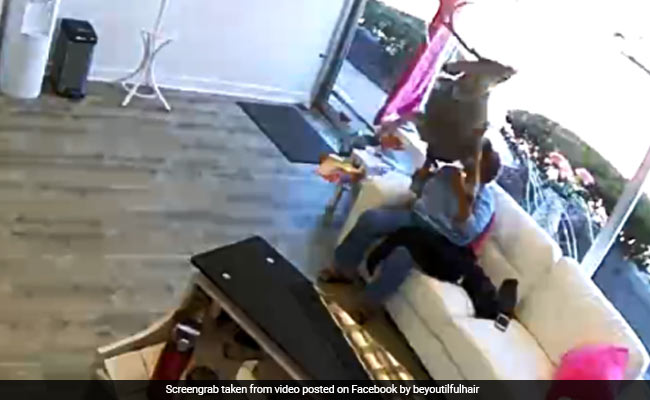 Deer Crashes Through Glass Window, Jumps Over Woman In Shocking Video
