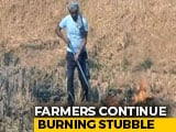 Video : Some Farmers In Punjab Continue To Burn Stubble In Jalandhar Village