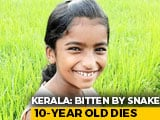Video : Kerala Girl,10, Dies Of Snakebite In Class, School Allegedly Ignored Injury