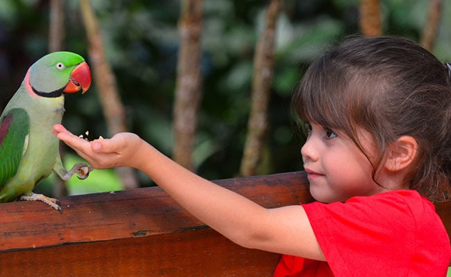 """World Kindness Day: 10 Beautiful Quotes On """"Giving Without Expecting"""""""