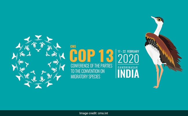 India Gears Up For UN Summit On Migratory Species