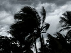 Cyclonic Storm To Move Towards Tamil Nadu Coast In Next 24 Hours