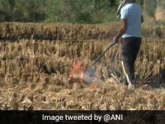 After A Year, 1 Firm Accepts Punjab's Stubble Burning Solution Challenge