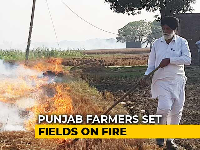 Video : Not Only Cash, Arrange Store House For Stubble, Say Farmers