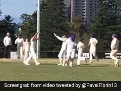 Watch: Romanian Cricketer's Wild Celebration After First Wicket In Australia Is Viral