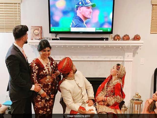 Couple Watches Cricket Soon After Marriage, ICC Makes Them Famous News In Bengali