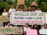 Video : #FridaysForFuture: Gurugram Students Skip Classes And Join The Movement For A Cleaner Environment