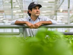 Indoor Farming Is One Of Decade's Hottest Trends With Millions Pouring In