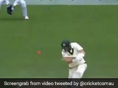 AUS vs PAK 2nd Test: स्टीव स्मिथ की बैटिंग तकनीक की मार्नस लाबुशाने ने की