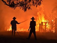 Australian Bushfires: Firefighter On Rescue Operation Lit Seven Blazes, Say Police