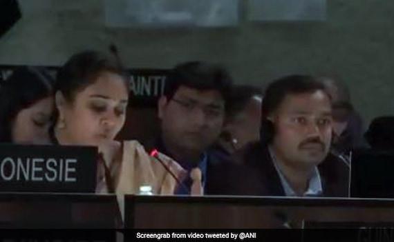 कश्मीर मामले पर भारत का करारा जवाब, कहा- पाकिस्तान के डीएनए में है आतंकवाद