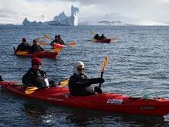 80,000 Tourists Visit Antarctica To Swim With Penguins Amid Criticism