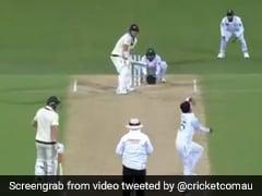Aus Vs Pak: डेविड वॉर्नर ने मारा ऐसा शॉट, पाकिस्तानी फील्डर को नहीं दिखी गेंद, देखें Video