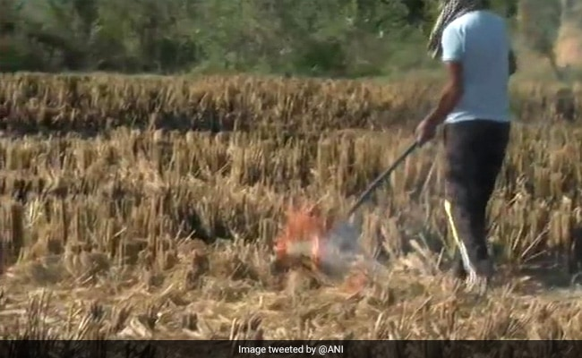 Air Quality Panel Asks NCR States To Adopt ISRO's Farm Fire Estimation Protocol