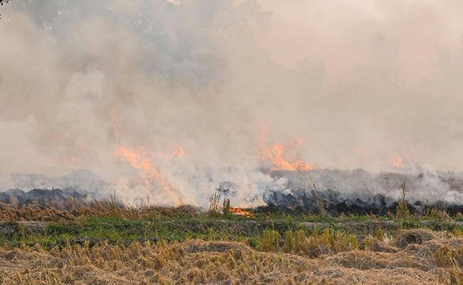 अनूठी पहल : पराली नहीं जलाने वाले किसानों को सरपंच ने कराई हवाई सैर