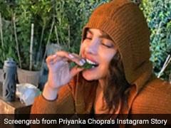 Priyanka Chopra Jonas Drooling Over Paan In Delhi Is All Of Us Post Dinner (See Pic Inside)