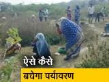 Video : NDTV पर खबर दिखाने के बाद रातों-रात पहुंचे अधिकारी और पौधे लगाने का काम शुरू हुआ