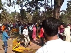 """12 Cops Injured In Attack By Villagers Over Madhya Pradesh """"Healer Tree"""""""